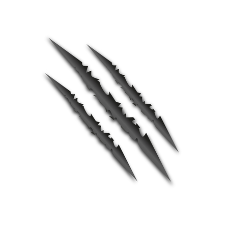 laceration: The claws of a wild animal isolated. Beautiful scar. Vector illustration