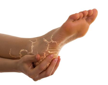 beautiful ankles: Female leg