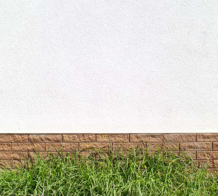 Empty tag on white wall with grass on ground. Element for design. Abstract background. photo