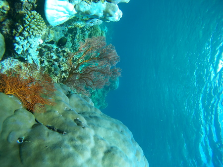 fish water: Underwater landmark and part of the main land. Amed village, Bali, Indonesia