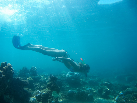bottomless: Underwater shot of the woman moving on the breath hold in the depth. Amed village, Bali, Indonesia