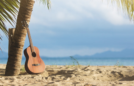 An acoustic guitar standing in the sandy beach under palm tree Banco de Imagens