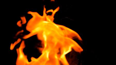Camping fire burning in the night Reklamní fotografie