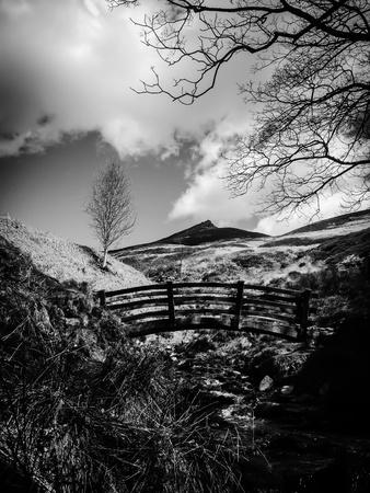 black: Bridge & Hillside - Black & White