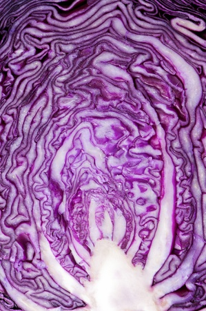 Close up of red cabbage