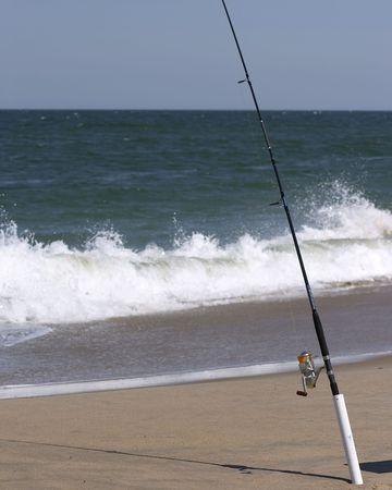 fishy: surf fishing