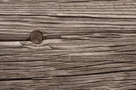 worn: a macro picture of old wood and nail