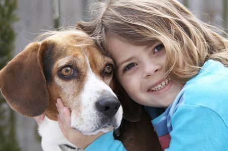 a cute picture of a young beagle and a little girl Stock Photo