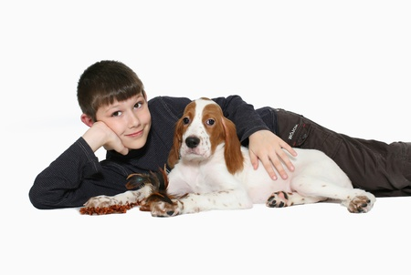 The boy with a puppy of a setter, isolated on a white photo