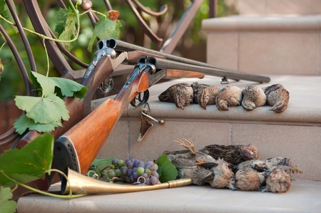 Two double-barreled shotguns on a stone steps beside several dead quail that were successfully shot on the hunt. Focus on the top number of birds.