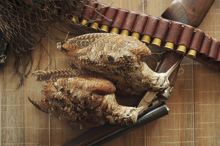 Hunting trophies and equipment lie он wooden board. Hunting of woodcock birds. Horizontal.