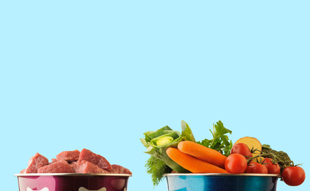 Raw ingredients for pet food in bowl on blue background. Horizontal.