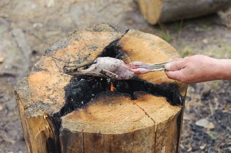 Cooking fried woodcock or snipe in hot butter with red currant. Outdoors.