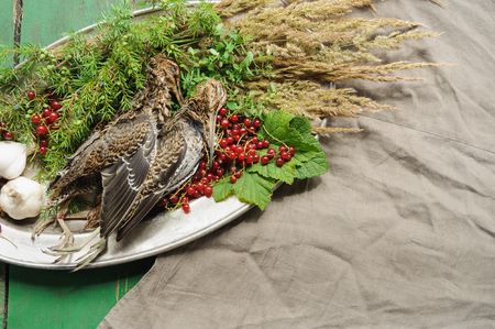 Wild hunting fowls in cooking. Two snipe or woodcock lie on metal dish. Hunting composition, outdoors. Wildfowl hunting. Stock Photo - 107642069