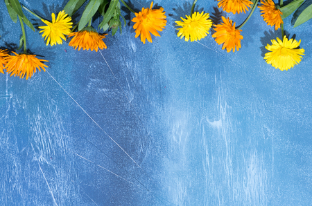 Floral pattern of calendula flowers on blue background. Flat lay, top view. Floral background. 写真素材