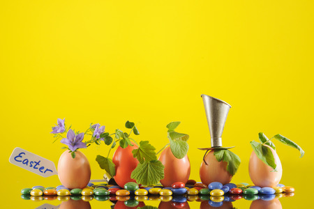 Five organic seedling plants in Easter eggs on yellow background, eco gardening. Horizontal. Stock Photo