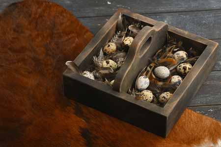 Open eco-friendly wooden box with feathers and quail eggs on animal skin. Rough dyed wooden background. Eggs For Easter. Boho stile. Archivio Fotografico