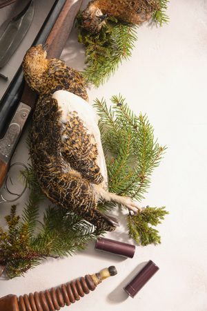 Hunting concept with ptarmigan, shotgun, fir-tree branches and ammunition for hunting arranged on light background. Wildfowl hunting.