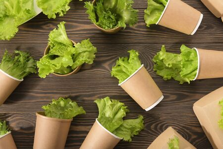 Biodegradable tableware and greens on wooden background. Environmental protection. Secondary processing. The concept of zero waste.