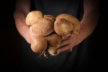 Man holding king bolete in hand. Rustic style.