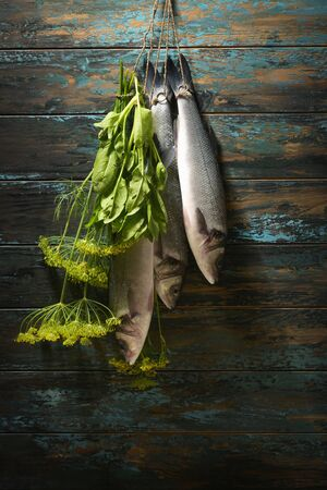 Fish hanging on the clothesline on the background of an old painted wooden blue wall.