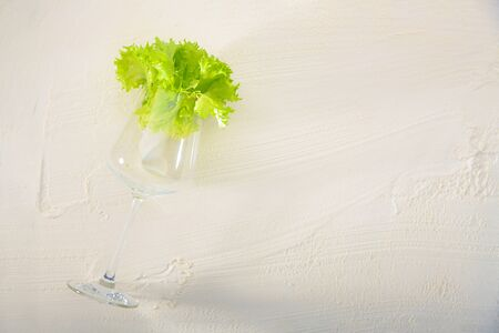 An alternative view of food. Natural lettuce inside a wine glass on a white textured background. Creative conceptual and colorful collage.