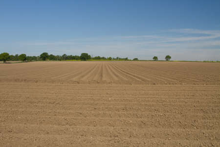 furrows: View of the furrows on a ploughed field Stock Photo
