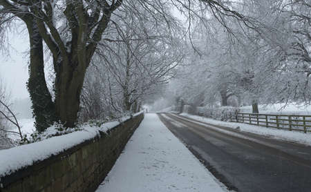 wintery: View of a Wintery road with the wall and bushes converging to a center point