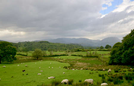 cumbria: Veiw of some mountains across the fields in the lake district in cumbria