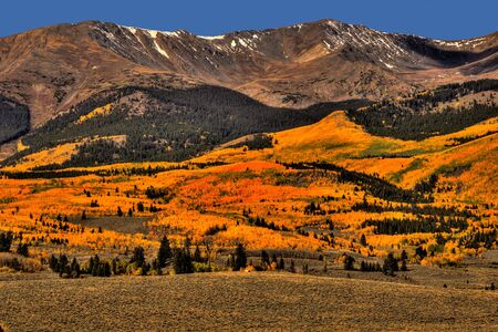 Brilliant fall foliage on display on the road to Four Bay Reservoir south of Leadville, Colorado.