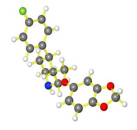 Molecular model of paroxetine