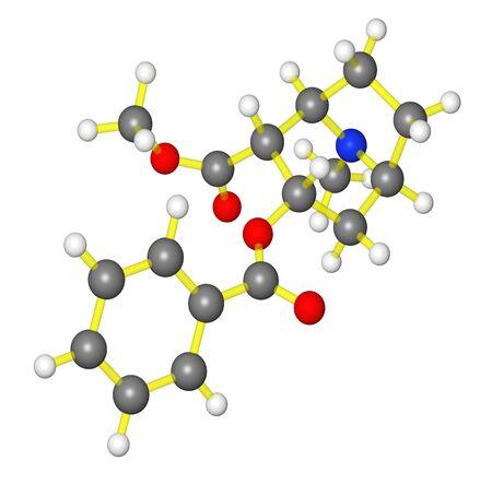 Molecular model of cocaine