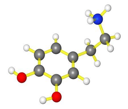 Molecular model of dopamine Stock Photo