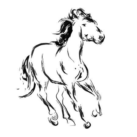 Horse sketch Vector