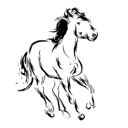 Esbozo de caballo