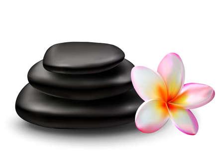 stacked stones: Spa zen stones and plumeria flower. Vector illustration