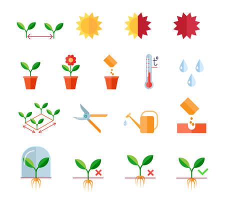 Zaailingen en planten platte vector iconen set