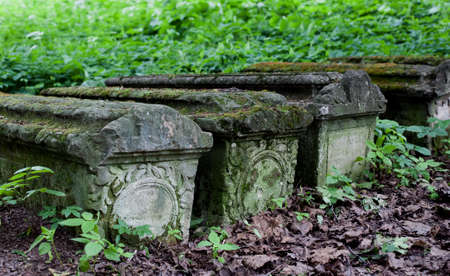 unnamed: Old stone coffins in the woods with dried leaves on the ground, selective focus