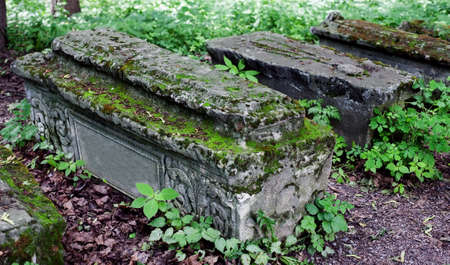 unmarked: Old stone coffins in the woods with dried leaves on the ground, selective focus