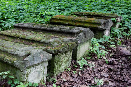 unmarked: Old stone coffins in the woods, selective focus