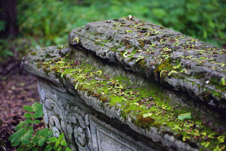 unmarked: Old stone coffin with moss closeup, selective focus