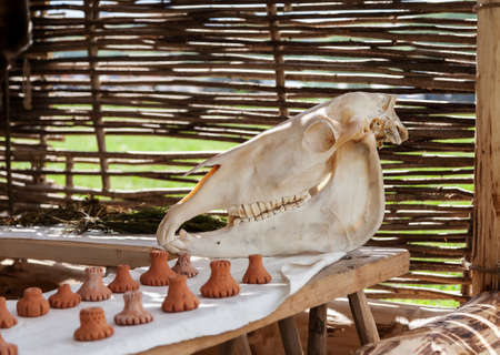 Horse skull on a wooden table with some ceramic figures on it