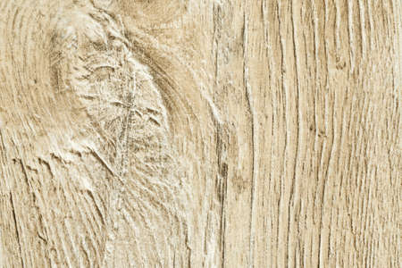 Oak texture close-up shot, abstract texture