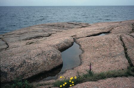 smooth stones: Smooth stones are vorn by the sea