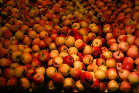 varieties: Apples of different colors and varieties Stock Photo