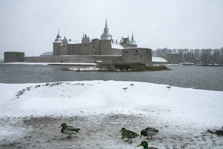 Kalmar Castle on a gray winter with little snow and ducks