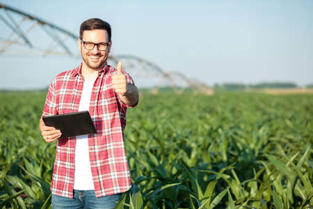 Happy young farmer or agronomist in red checkered shirt showing thumbs up and smiling directly at camera. Standing in corn field, holding a tablet. Organic farming and healthy food production