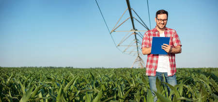 Happy young farmer or agronomist in red checkered shirt writing on a clipboard, inspecting a corn field. Irrigation system in the background. Wide ratio panoramic photo. Organic farming and food production