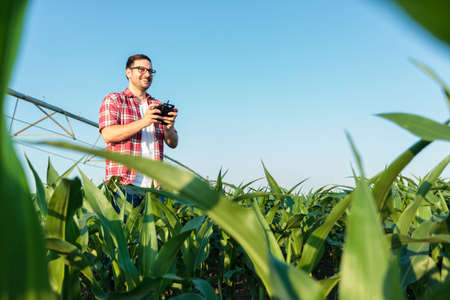 Happy young farmer or agronomist flying a drone, holding remote controller, and inspecting large corn field. Low angle view. Organic farming and healthy food production. Stok Fotoğraf
