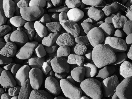 Black & White Rock Gathering